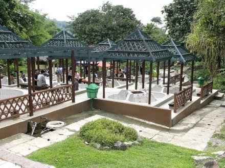 Kinabalu Park and Poring Hot Springs-8